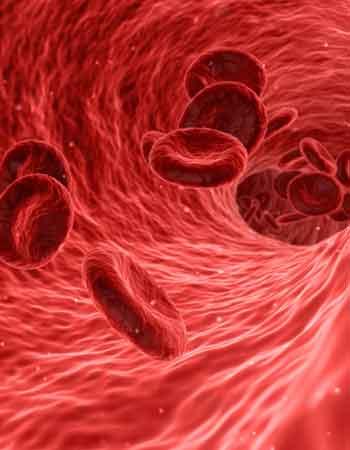 blood-1813410